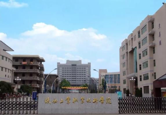 【診改進行時】陜西工業職業技術學院,首批試點院校的診改方案與策略分享